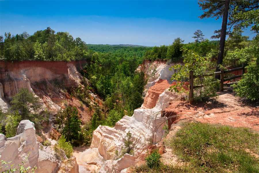 This is a Brian Charles Steel photograph of Providence canyon in Columbus, Georgia.  The canyon is in the middle left portion of the frame.   The canyon rock is white and red.  On the right side there is a wooden fence with some bushes and trees.  Green trees run through the middle of the canyon.  The sun is bright blue with no clouds.  It is bright and sunny.