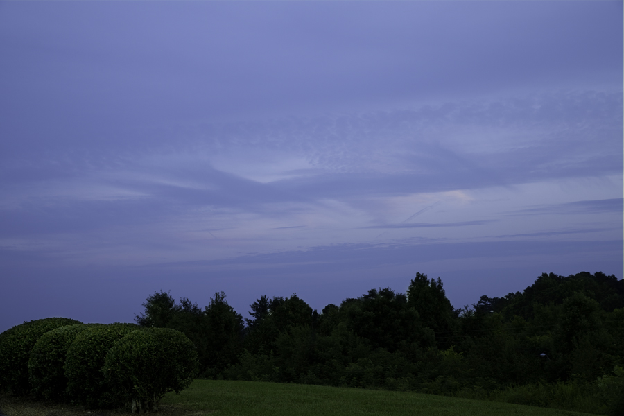 This Brian Charles Steel photo depicts a night sky in Cleveland, Tennessee.  In the bottom right corner of the frame are four large bushes in green grass.  The grass is on a small hill that goes across the image.  The bushes are in a row horizontally across one fifth of the frame. In the middle ground behind them is a stretch of trees that goes across the frame. The trees rise just above the bushes.  Above the trees is a blue sky with a few thin light blue clouds stretching diagonally across the photograph.